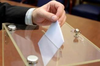 Revista Presei: PDL joaca alba-neagra cu alegerile din 2012
