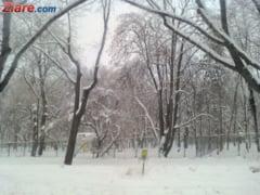 Romania sub zapada: Gata cu viscolul, vine gerul. Scoli inchise si vineri