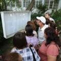 Titularizare 2011: Sute de profesori contesta examenul