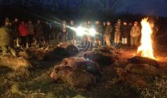 TeleormanLeaks PSD, la vanatoare: Cum se transeaza bugete, contracte si functii in timp ce sunt ucise sute de animale