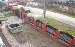 VIDEO Imagini socante cu un sofer din Salaj care calca intentionat un caine cu masina. Conducatorul auto, cautat de Politie