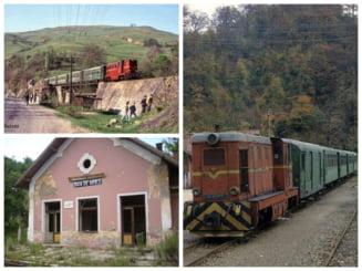 VIDEO Povestea mocanitei din Apuseni, trenul simbol care a schimbat viata motilor. Monumentul istoric a fost abandonat de autoritati