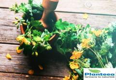 (P) Farmacia naturista Planteea este alegerea ideala in obtinerea unui stil de viata cat mai sanatos
