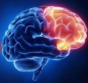 10 lucruri pe care nu le stiai despre creierul tau