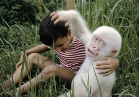 11 animale cu mutatii genetice adorabile (Galerie foto)