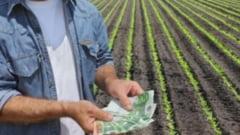 13.000 de fermieri din Brasov primesc peste 30 de milioane de euro de la APIA!