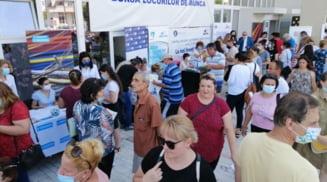 136 de persoane angajate in urma bursei locurilor de munca de la Slatina