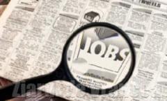 141 de oferte de munca in judet, 666 in strainatate