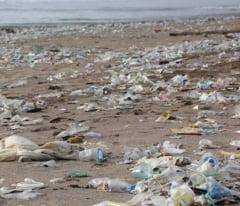 17 oameni au murit ingropati de gunoi in Mozambic (Video)
