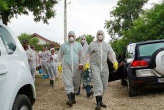 19 focare de pesta porcina au fost stinse. Sapte localitati din Bihor au focare active