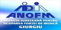 2,26% rata somajului inregistrat la nivelul judetului Giurgiu in luna iulie 2019