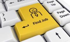 222 de oferte de locuri de munca in Vrancea