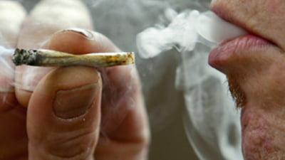 25% dintre europeni au fumat, cel putin o data, canabis