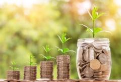 3 idei de investitii simple, profitabile si cu bani putini