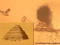 5.000 de bacterii controlate de computer au construit o piramida (Video)