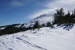 5 idei pentru vacanta de iarna in Bulgaria