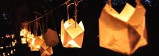 5000 de gulgute vor lumina Parcul Rozelor din SEVERIN la a sasea editie a Festivalului Luminii