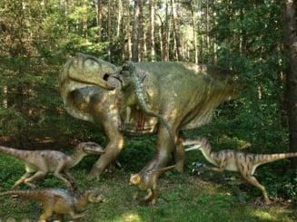 7 dintre cele mai mari animale din toate timpurile (Galerie foto)