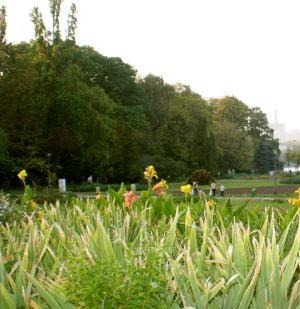 7 hectare din parcul Herastrau vandute la de 40 de ori sub pretul pietei