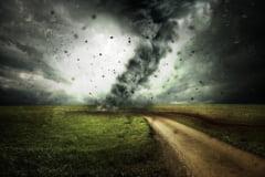 A crescut bilantul dezastrului lasat in urma de taifunul Hagibis: 70 de morti