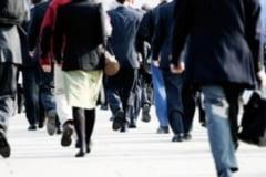 A crescut numarul angajatilor in Bistrita-Nasaud, dar si castigul salarial