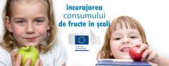 A fost adoptata legea care incurajeaza consumul de fructe proaspete in scoli si gradinite