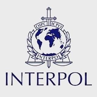 A fost ales noul director al Interpol, o veste proasta pentru Putin