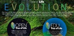 """A fost creat primul """"arbore al vietii"""" in format digital - cuprinde toate formele de viata cunoscute"""