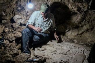 A fost descoperit un altar al mayasilor, vechi de 1.500 de ani, de pe vremea regilor-serpi