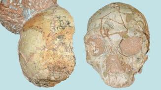 A fost identificat cel mai batran homo sapiens din Europa! Traia in Grecia acum 200.000 de ani