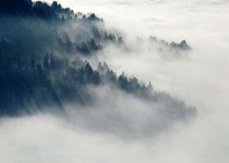 ANM - 36 de judete sunt sub cod galben de ceata in aceasta dimineata