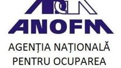 ANOFM, Agentia pentru Plati si Casa de Pensii vor avea, din 1 ianuarie, acces direct in REVISAL