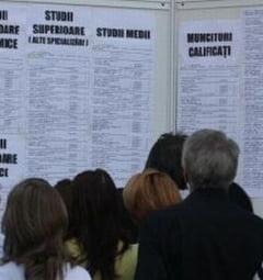 ANOFM: Peste 10.000 de posturi vacante. Afla ce se cauta