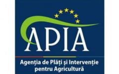 APIA / Proceduri pentru motorina