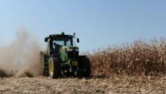 APIA: Subventie de 16 euro/hectar pentru culturile amplasate pe teren arabil