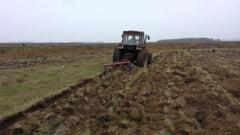 APIA a acordat agricultorilor subventiile pe motorina