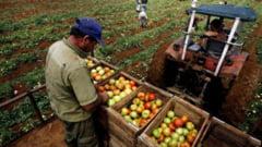 APIA avertizeaza fermierii cu privire la noile conditii pe care trebuie sa le respecte
