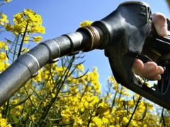 APIA plateste fermierilor mai putini bani pentru subventia la motorina decat anul trecut!