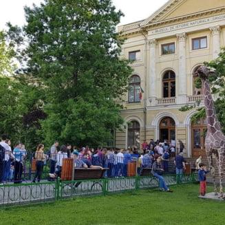 Academia Romana cere Guvernului Dancila sa nu se atinga de Muzeul Antipa