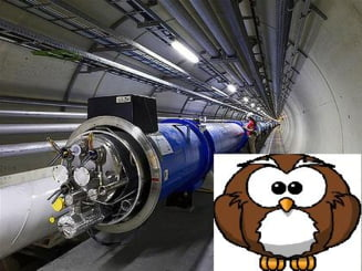 Acceleratorul de particule LHC, sabotat de o bufnita