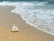 Acces pe o plaja dintr-un oras belgian se va face pe baza de rezervare