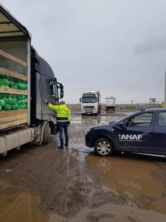 """Actiunea Demetra: Peste 80 de tone de legume si fructe au fost confiscate. Printre """"victime"""" - ceapa din Polonia si usturoiul din China"""
