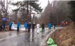 Activistii Agent Green au blocat camioane de lemne pe Transfagarasan (Video) UPDATE Romsilva spune ca transportul era perfect legal