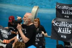 Actor arestat in timp ce protesta fata de modul in care sunt tratate balenele ucigase
