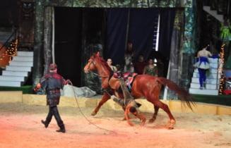 Adio spectacolelor cu animale la Circul Globus: Primaria a interzis dresura acestora