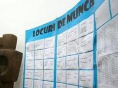 Agentia Judeteana pentru Ocuparea Fortei de Munca Giurgiu ofera 97 locuri de munca