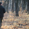 Agresorii activiștilor de mediu din Suceava au fost lăsați liberi. Patru inculpați sunt sub control judiciar