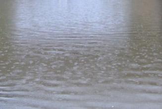 Ajutoare de deces de 115.000 lei, in urma inundatiilor