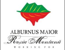 Alburnus Maior cere demiterea ministrului Economiei, Daniel Chitoiu