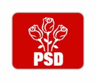 Alegerea noului presedinte al PSD, minut cu minut